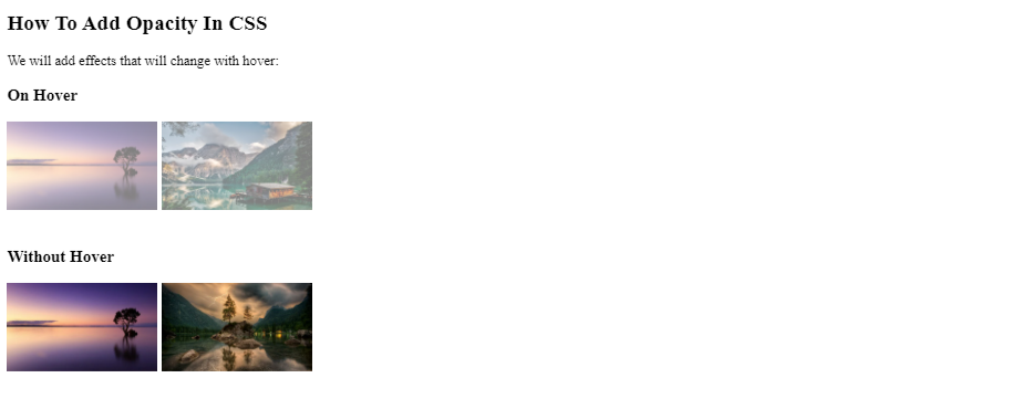 How To Add Opacity In CSS?